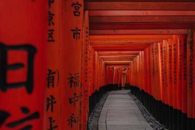 Portes torii dans le sanctuaire fushimi inari, kyoto, japon