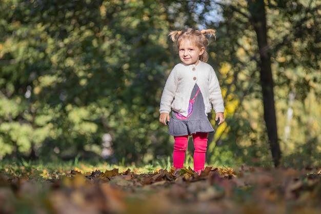 Portrait d'une adorable petite fille mignonne jouant dans les feuilles brûlantes du parc en automne sous le soleil