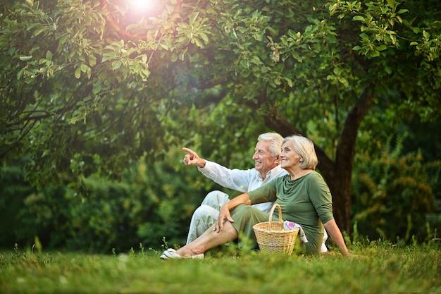 Portrait, de, amusant, vieux couple, sur, pique-nique