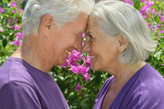 Portrait de beau couple de personnes âgées en plein air dans le parc d'été