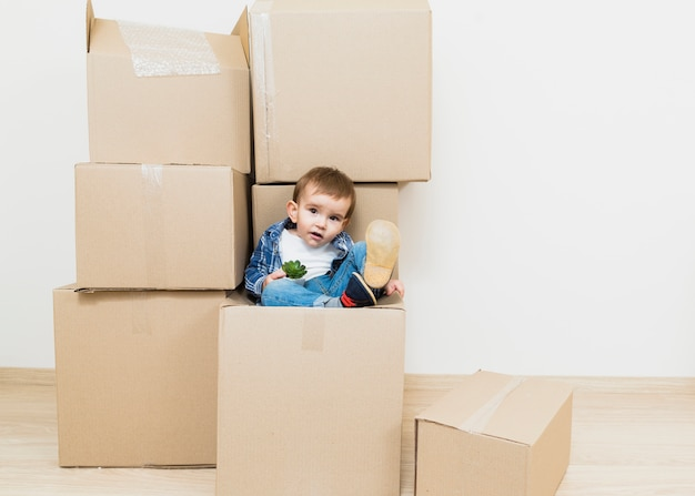 Portrait, bébé, bambin, garçon, séance, carton, tenue, cactus, plante
