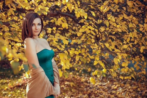 Portrait d'une belle jeune femme dans un parc en automne. images aux couleurs chaudes