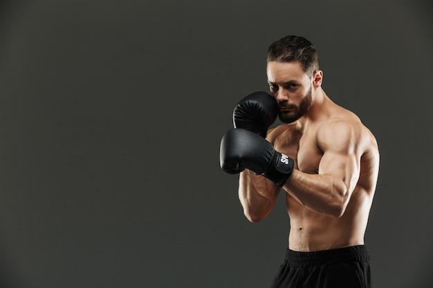Portrait d'un boxeur sportif musclé concentré