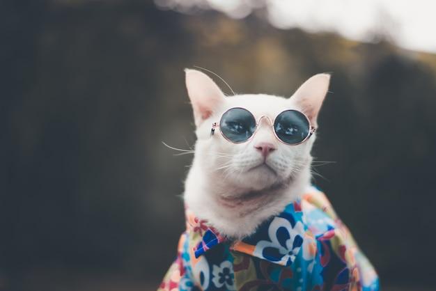 Portrait de chat blanc hipster portant des lunettes de soleil et une chemise