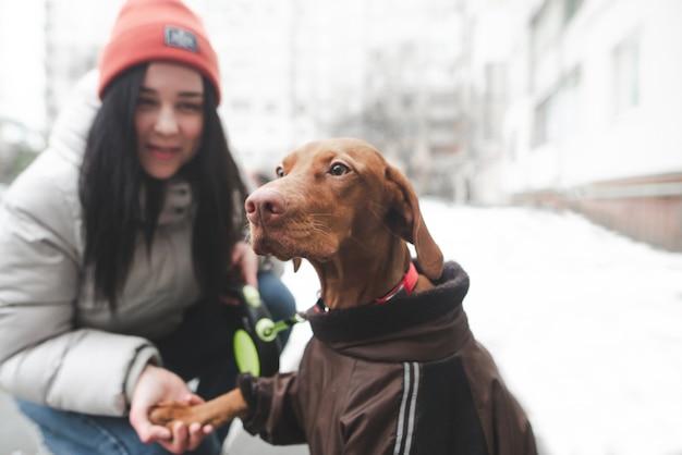 Portrait d'un chien habillé marchant avec une fille un jour d'hiver