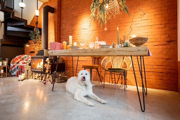 Portrait d'un chien mignon allongé sous la table dans un intérieur magnifiquement décoré pour les vacances du nouvel an
