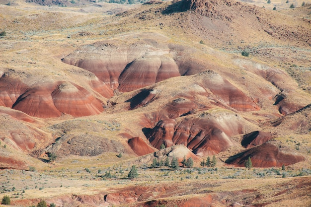 Portrait des collines rouges sablonneuses dans une zone déserte sous le ciel lumineux