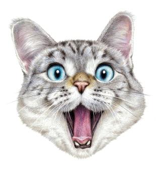 Portrait coloré d'un chat heureux sur fond blanc. dessin avec des crayons aquarelle