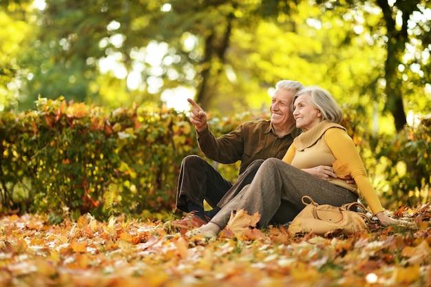 Portrait d'un couple d'âge mûr dans le parc en automne