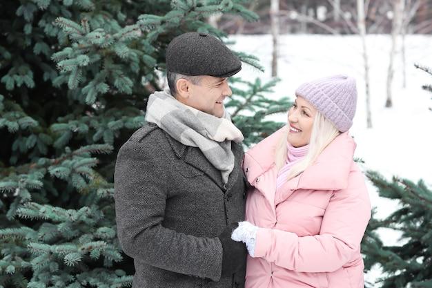 Portrait d'un couple d'âge mûr heureux dans le parc d'hiver