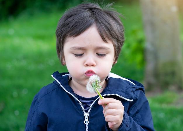 Portrait de cute kid soufflant pissenlit avec fond naturel flou gree, active child boy jouant en plein air dans le parc au printemps.