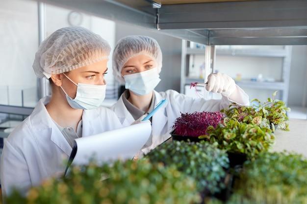 Portrait de deux jeunes femmes scientifiques portant des masques tout en étudiant les jeunes arbres en laboratoire de biotechnologie, copy space