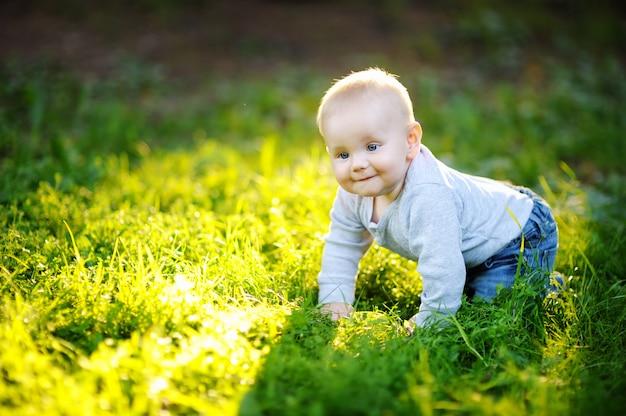 Portrait du petit bébé garçon dans le parc ensoleillé