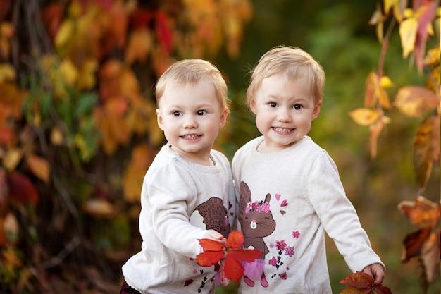 Portrait émotionnel d'automne de petites filles jumelles. jolies petites filles avec des feuilles de vigne rouges dans le parc d'automne. activités d'automne pour les enfants. amusement de temps d'halloween et de thanksgiving pour la famille.