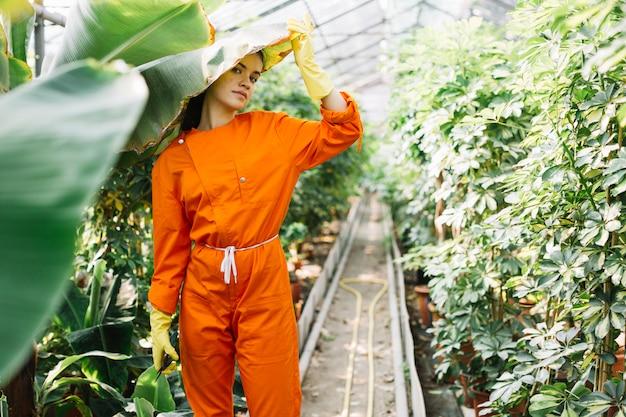 Portrait d'une femme jardinier debout sous une feuille de bananier en serre