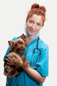 Portrait de femme médecin vétérinaire en uniforme médical avec un petit chien dans ses mains