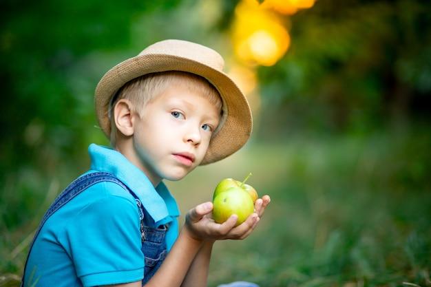 Portrait d'un garçon de six ans dans un verger de pommiers et tenant des pommes