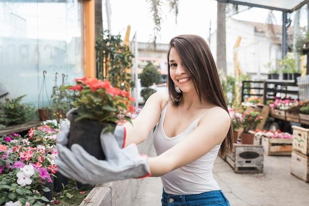 Portrait d'une jeune femme souriante montrant une plante à fleurs rouge dans la serre