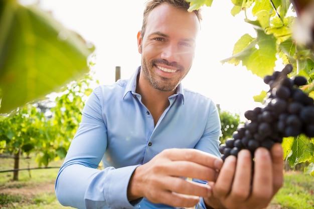 Portrait d'un jeune homme souriant, touchant les raisins