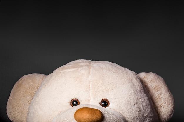 Portrait d'un ours en peluche