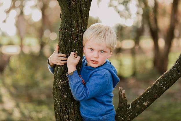Portrait d'un petit garçon assis dans un joli jardin