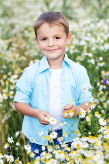 Portrait d'un petit garçon dans un champ de camomille