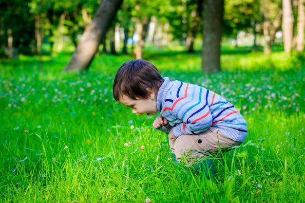 Portrait d'un petit garçon sur un fond d'herbe. petit garçon en pull.