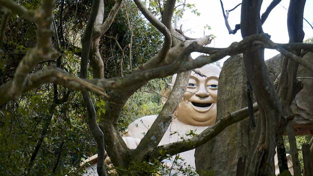 Portrait d'une pierre de statue de dieu chinois dans la forêt tropicale de pluie - chine, hainan