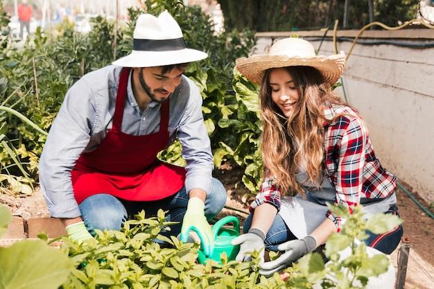 Portrait de souriant jardinier mâle et femelle en regardant les plantes dans le jardin