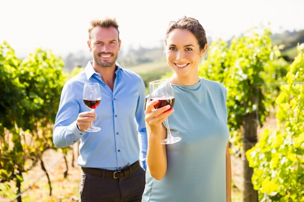 Portrait, de, sourire, couple, tenue, lunettes vin, à, vignoble