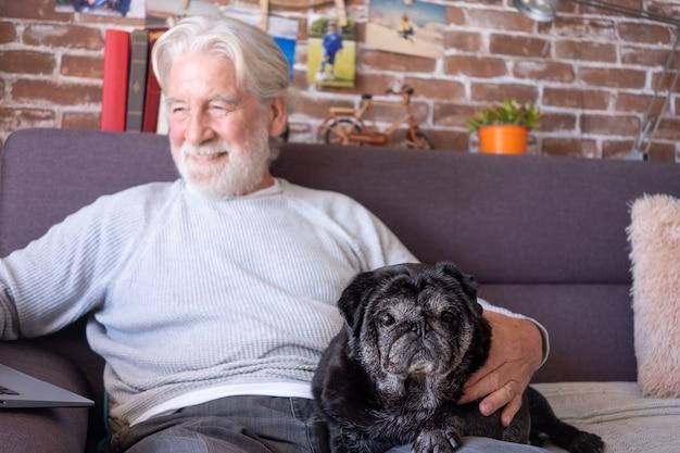 Portrait d'un vieux chien carlin noir assis sur un canapé à la maison tandis que le propriétaire senior utilise un ordinateur portable souriant