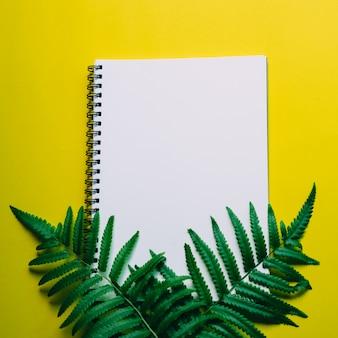 Pose plate du bureau minimal avec ordinateur portable et plante verte