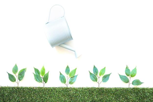 Pot arrosant de petites plantes