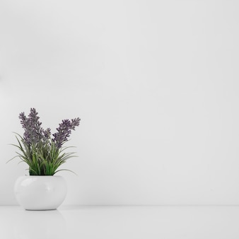 Pot avec de belles fleurs