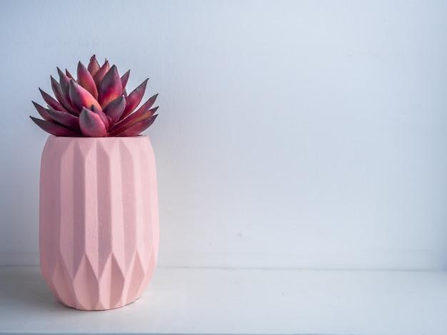 Pot de cactus. pot en béton. jardinière en béton géométrique moderne.