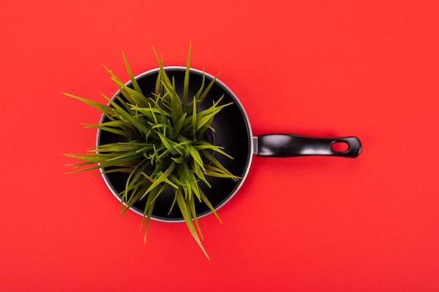 Pot de fleur se tient dans la casserole isolé sur rouge