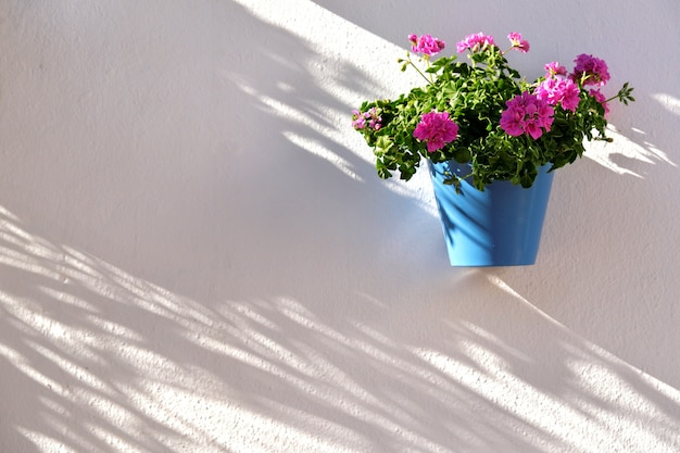 Pot de fleurs décorant un mur blanc dans la vieille ville de marbella
