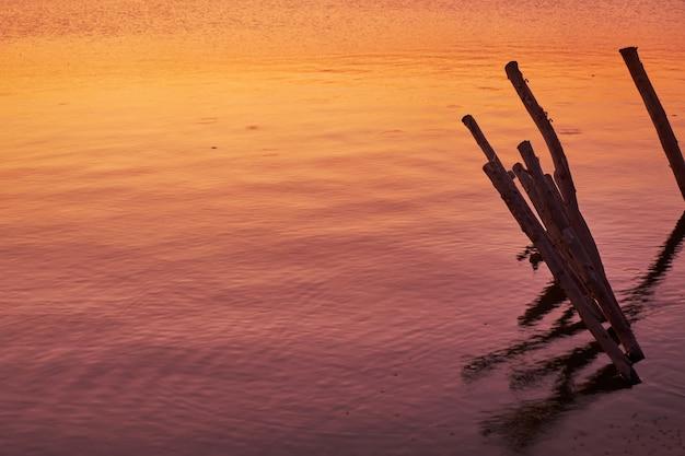 Des poteaux en bois dans l'eau