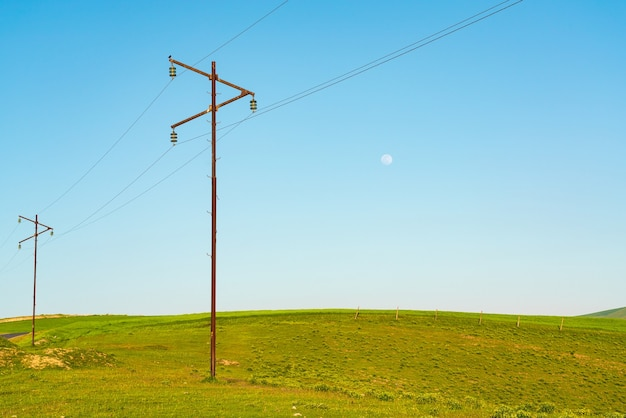Poteaux électriques sur un pré vert