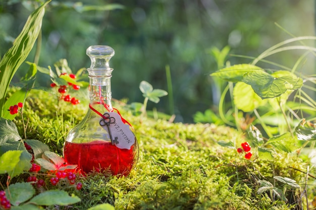 Potion magique en bouteille dans la forêt