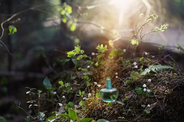 Potion magique sur bouteille en forêt