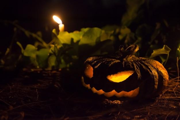 Potiron sculpté et orné de bougies dans la nuit d'halloween