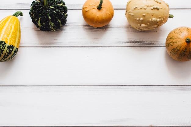 Potirons et courges sur table en bois blanc