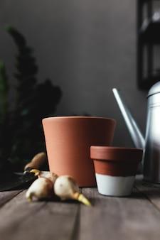 Pots en céramique sur une vieille table en bois gris, bulbes de tulipes, arrosoir.