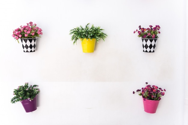 Pots colorés suspendus aux murs