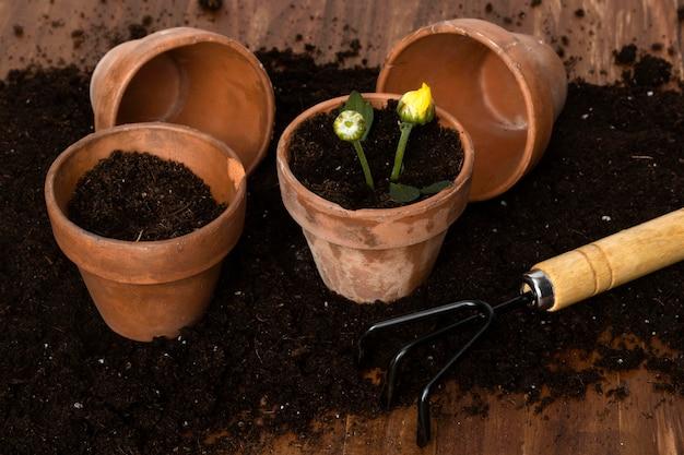 Pots de fleurs à angle élevé