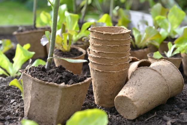 Pots de tourbe pour planter dans le jardin sur le sol