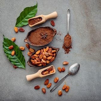 Poudre de cacao et fèves de cacao sur du béton.