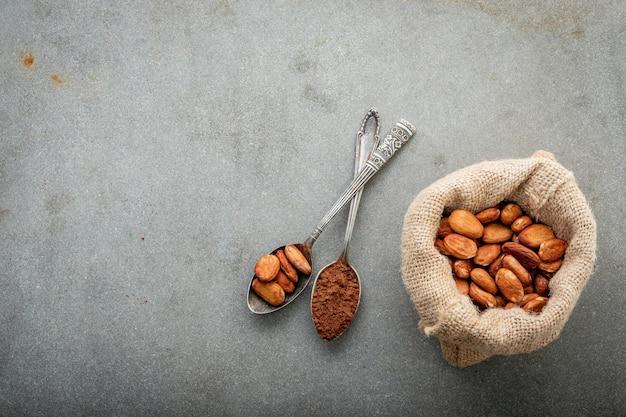 Poudre de cacao et fèves de cacao sur fond de béton.