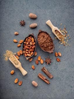 Poudre de cacao et fèves de cacao